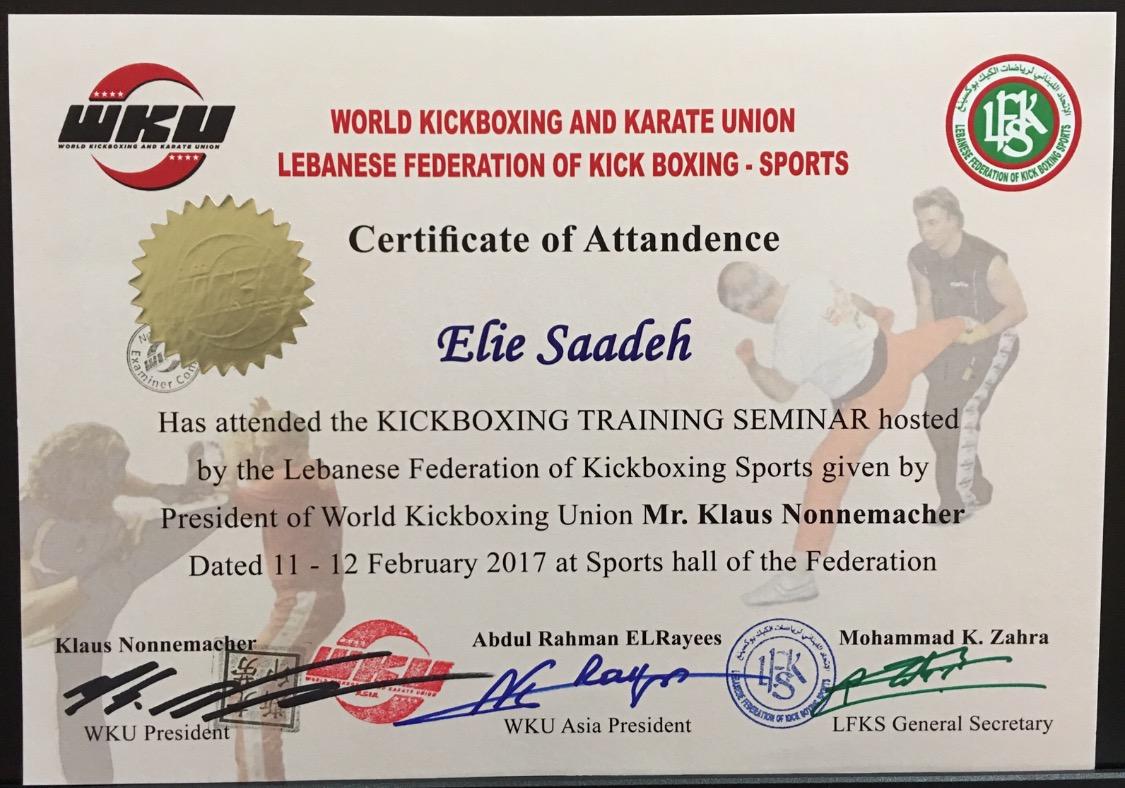 Certifications Elie Saadeh
